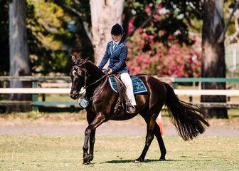 Faith Wilson & Reflector won the rider class 10-13 years