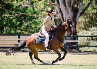 Tahlia McDonald & TOCAL LOONEY TUNES res champion working gelding