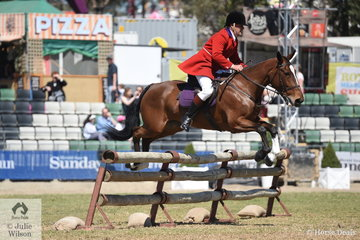 Ron Ferguson representing the Murray Valley Hunt Club is pictured aboard Wendy Buller's, 'Delatite' during the Noel Mason Memorial Hunters' Plate.
