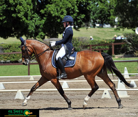 Stepping out in the Secondary Intermediate I class is Silverdene Pharaoh, with Amy Bachmann in the saddle, representing Victoria at the 2019 Interschool Nationals.