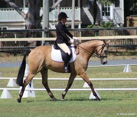 Tanya Stuart Gold Medal winner in the . Australian Stock Horse Prelim 1A
