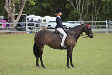 Champion Junior rider Kaitlyn Phillips riding Grandchester Spring Melody