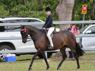 Kaitlyn Phillips and Granchester Spring Melody