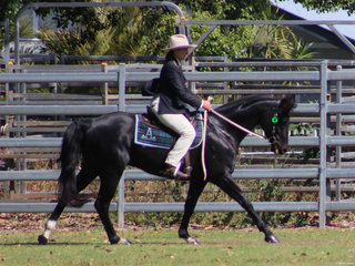 Jo Robson in the Stockhorse Ridden