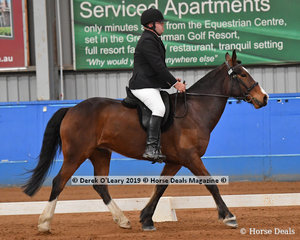 "David Rak from Victoria rode ""T.S. Leroy"" in the Novice Canter  Open & Advanced placing 4th with a score of 60.700%"
