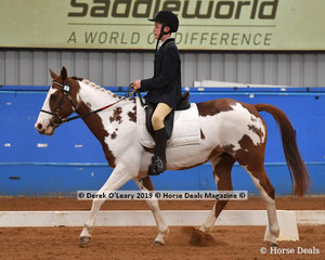 """Tyreece Wilson from South Australia rode """"Gem"""" in the Trot Intermediate & Assist, placing 4th with a score of 63.611%"""