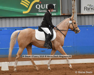 """Natalie Mellors from South Australia rode """"Zephyr"""" in the Trot Open & Advanced Class placing 4th with a score of 66.806%"""