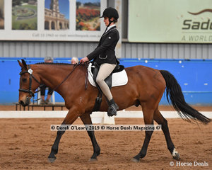 """Carol Homes from South Australia in the Walk Independent Class riding """"Yeti"""" placed 4th with a score of 66.000%"""