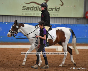 "Sarah Hilton from Tasmania rode ""Oakey Oki"" in the Walk Led  placing 3rd with a score of 66.167%"