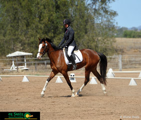 Trish Aldridge takes the young Oxlea Naighm through her first dressage test in the EvA60 at Toowoomba ODE.