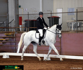 Competing strongly in the One Star dressage test was Nicholas Ballard riding Celtic Gilligan at the Toowoomba ODE.