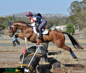 Flying over the trakehner in the CCN1* at the 2019 Toowoomba ODE was 'Jeds Jetset Lad' ridden by Jodie Smith.