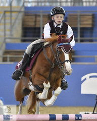 Zac Goodall from Queensland and his Aerwhan Remington won the Sub Junior Showjumping Event 1.