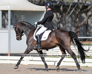 """Campbell Baxter rode """"Wilky Purple Sands"""" in the Medium 4A placing 3rd with a score of 67.431%"""