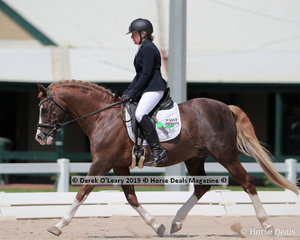 """Rossanne Mason rode """"Triple Trees Prince Perfect"""" in the Novice 2a/2b Championship on Saturday placing 5th on 26 points"""