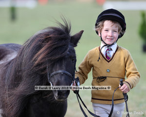 """Craig Mckerron looked to be having a ball in the Junior Pony Club Handler 5 years and under 8 years with his lovely Shetland """"Tanya"""""""