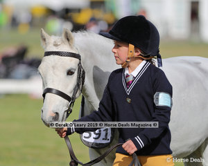 """Hannah Fletcher from Leighdale Pony Club led """"Tommy Gun"""" in the Pony Club Handler 8 years and under 10 years"""