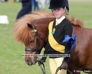 "Winners in the Pony Club Handler 8 years and under 10 years, ""Chesapeake Park Paparazzi"" expertly led by Amelia McDougall"