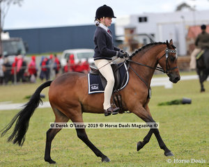 """Winners in the Pony Club Rider 10 years and Under 12 years, Rosemary Heagney riding """"Harrington Park Timeless Dreams"""" representing Leighdale Pony Club"""