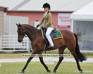 """Winners in the Stock Horse Ridden Gelding 5 years and over, Tahlia Young and """"Kardinia Niah"""""""