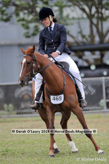 """Oakton Lodge Shooting Star"" ridden by Colleen Page in the Junior Working Stock Horse 4 years and Under"