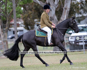 """Winners in the Junior Working Stock Horse 4 years and under, """"Labanjack Royal Encounter"""" ridden by Angus Richardson"""