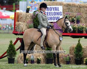 "Reserve Champion Arabian Derivative Under Saddle, ""Clintanna Tutti Frutti"" exhibited by Jayde Salisbury"