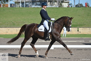 Lewis Newton rode Moira Kelly's, DS Burlington Bertie in the IRT FEI Prix St Georges.