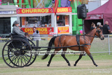 """Michelle Wight competed in the Best Jimker or Buggy turnout with """"Ithappensinvegas"""""""