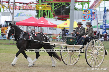 "Timothy Southern's entry in the Horse Brake Turnout ""Lady Jaylow"""