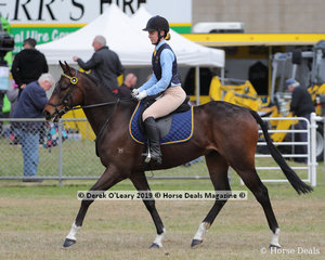"Zoe Hogan and ""Lyric"" in the HRCAV Ridden Mount Level 5. Zoe won Champion in Smartest on Parade in the HRCAV ring."