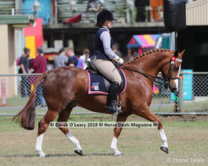 "Olivia Webster and ""Boston Sunrise"" in the HRCAV  Ridden Mount. Reserve Champion in the Rider class."
