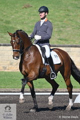 Brett Parberry rode Terry Snow's, good looking Bloomfield Royalist in the RHS Dressage EA Medium Championship.