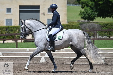 Denise Rogan rode Lisa Carver's, Andalusian stallion, Regalo De Susaeta to 13th place in the Trailrace EA Novice 2C.