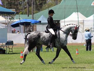 Supreme Rider  was awarded to Aolani Ware