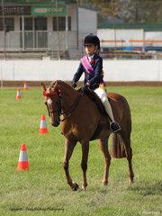 Reserve Champion Junior rider was Olivia Johnson