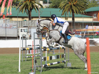 Todd Lane in the show jumping