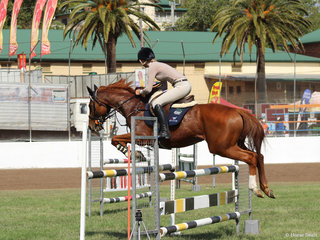 Bree Lang in the Show Jumping