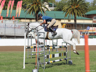 Nathan Johnson in the show jumping