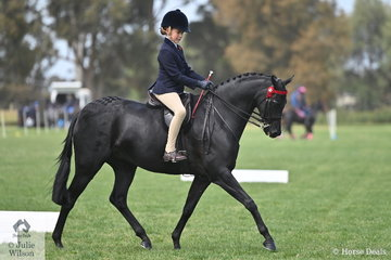 Estelle Gore-Johnson rode the Burns and Banks nomination, 'Wideacre Prince George' to make Top Ten in the Rider 9 AU 12 Years Championship.