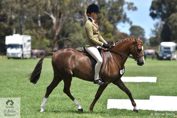 Charlee Cartledge rode Taylah Spiteri's, 'Bamborough Moon Shadow' to make Top Ten in the Child's Large Show Hunter Pony Championship. Saturday was devoted to the judging of the SHCV Junior Equestrian Showcase.