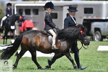 Asher Parsons rode Cassandra Parsons', 'Chesapeake Park Jelly' to make Top Ten in the Leading Rein Shetland Championship.