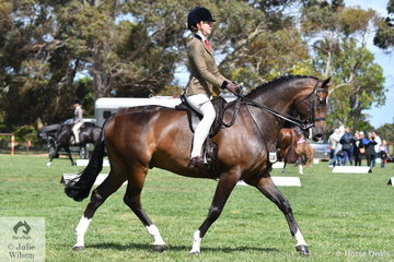 Alexandra Walsh rode Fiona Kittson-Walsh's, 'M Amadeus' to claim the Child's Show Hunter Hack Championship.