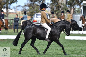 Taya Kellas is pictured aboard Rebecca Shute's charming, 'Owendale Black Thorn' during the judging of the Child's Small Show Hunter Pony.