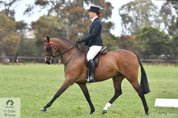 Brylee Thompson made Top Ten in the  Small Galloway Championship riding her, 'Bremala Miss Victoria'.