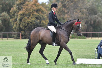 Ali Berwick made Top Ten in the Small Galloway Championship aboard her own and Susan Gorst's nomination, 'Lyndhurst Vogue'.