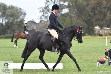Daniel McNamara rode Indianna Shepheard's, 'Sanlirra Just Magic' to make Top Ten in the Small Galloway Championship.