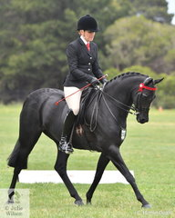 Melanie Burns rode the Burns and Banks nomination, 'Wideacre Prince George' to claim the 2019 SHCV Southern Stars Small Galloway Championship.
