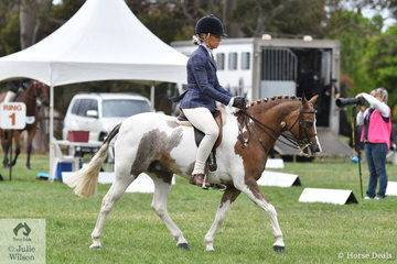 Renee Salway is pictured aboard her, 'Kyabra Park Casino Royale' during the judging of the Large Show Hunter Pony Championship.