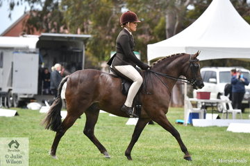 Rebecca Gerber rode her well performed, 'Loriot Breaking Dawn' to claim the 2019 SHCV Southern Stars Large Show Hunter Pony Runner Up award.